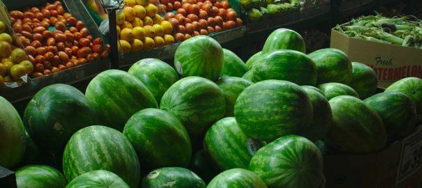 Wyposażenie warzywniaków